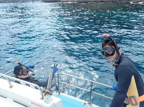 熱帯魚餌付けシュノーケル