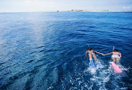 シーカヤック上陸+感動シュノーケリング+体験ダイビング+シーカヤック洞窟探検ツアー