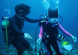 無人島体験ダイビングロングツアー