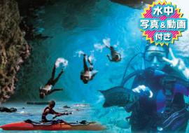 青の洞窟感動スノーケリングツアー+体験ダイビングロングコース+餌付けスノーケリング