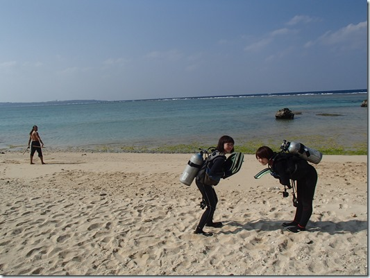 ダイビング (1)