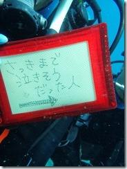12時カワタ様 (377)